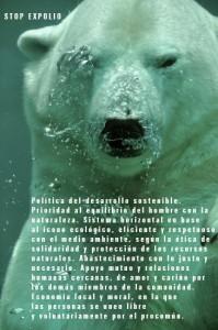 Bear polar Stop Expolio T